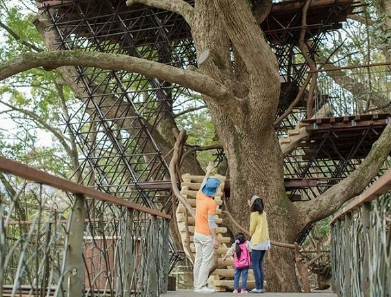 森の空中基地 クスクス,子連れ,リゾナーレ熱海,静岡