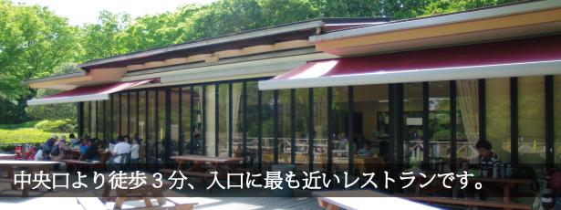 中央レストラン,武蔵丘陵森林公園,遊具,無料