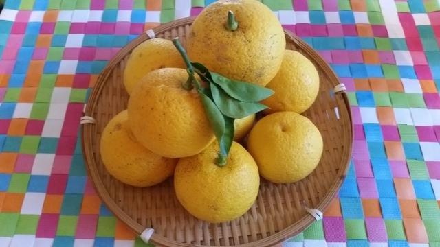 柚子のかごもり,柚子ジャム,作り方,簡単
