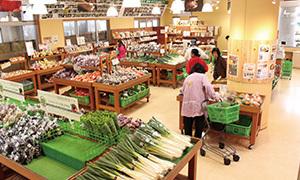 野菜直売所,道の駅もてぎ,SL,栃木