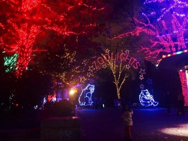 ワシントンDCの動物園ライトアップ,アメリカ,子育て ,イベント