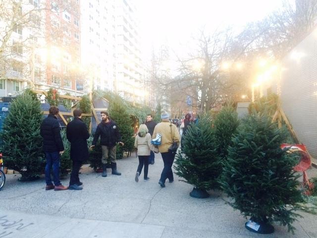 クリスマスツリー専用の屋台,アメリカ,子育て ,イベント