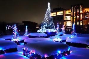 いくとぴあ食花,新潟,イルミネーション,雪