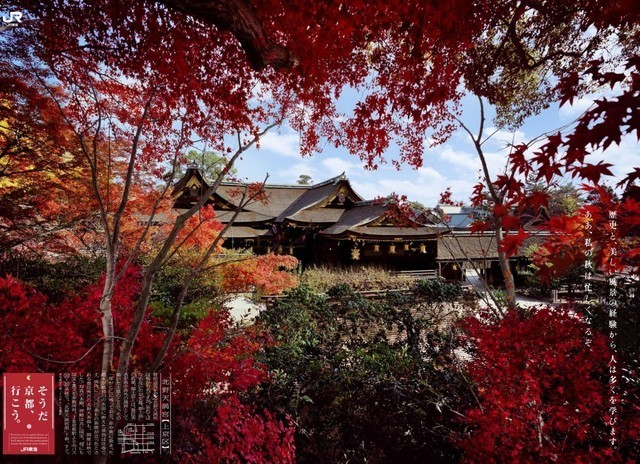 清水寺,京都,紅葉,子ども