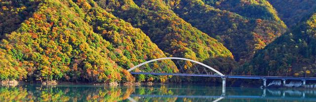 宮ヶ瀬ダム,神奈川,紅葉,スポット