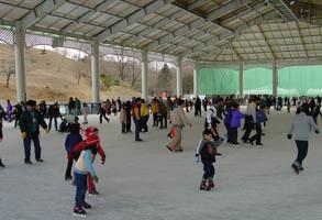 こどもの国スケート場,神奈川,スケート,子ども