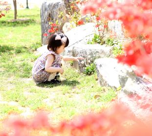 屋外撮影の例,韓国,記念,撮影