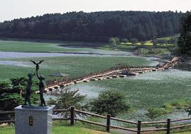 平筒沼ふれあい公園,紅葉,スポット,宮城