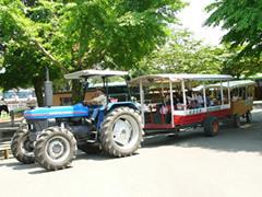 トラクターバス,静岡,体験,施設