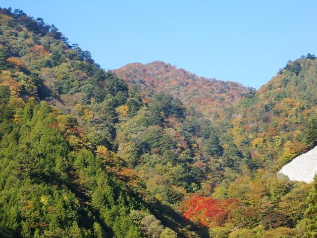 三頭山,東京都,登山,子ども