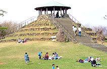 四季の森公園 展望広場 ジャンボ滑り台,神奈川,四季の森公園,遊ぼう