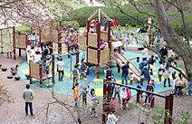 四季の森公園 遊具広場 ,神奈川,四季の森公園,遊ぼう