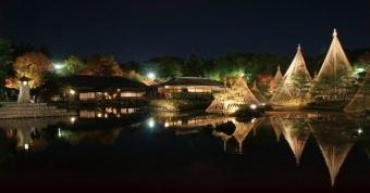 白鳥庭園,紅葉 ,ライトアップ,愛知県
