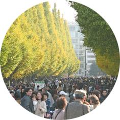 神宮外苑いちょう祭り,東京,紅葉,イベント