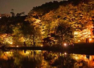 徳川園紅葉祭,愛知,子連れ,紅葉狩り