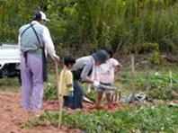 三和いもっこ村農園,広島,人気,スポット