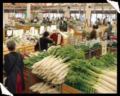 JAあぐりタウン げんきの郷,愛知,野菜,市場