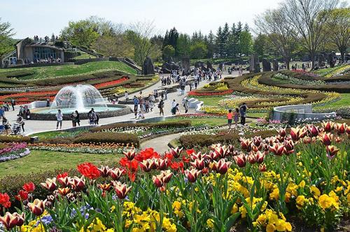 国営みちのく杜の湖畔公園,仙台,秋,子連れ