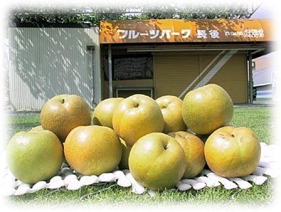 フルーツパーク,梨狩り,神奈川,子連れ