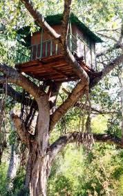 ツリーハウス,あけぼの子どもの森公園,絵本,公園
