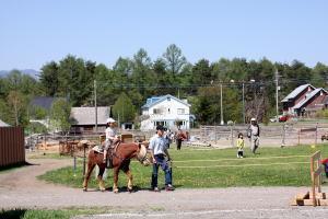 引き馬体験,八ヶ岳ウエスタン牧場,体験,おすすめ