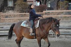 八ヶ岳ウエスタン牧場の乗馬教室,八ヶ岳ウエスタン牧場,体験,おすすめ