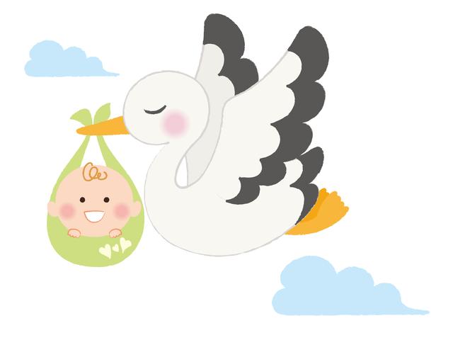 コウノトリ赤ちゃん,不妊,男性,