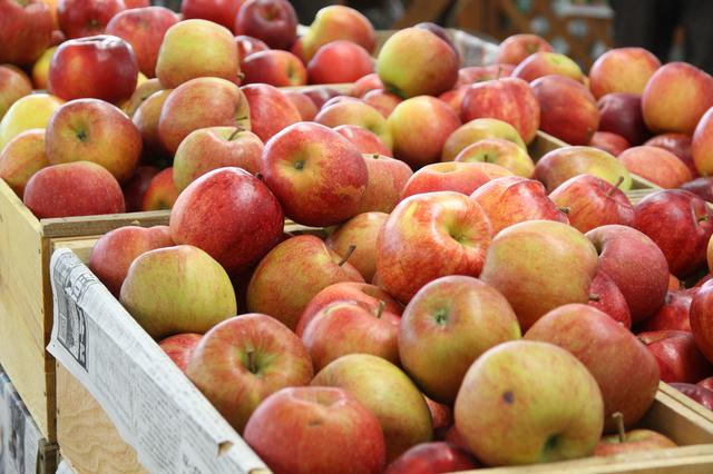 山盛りのりんご,離乳食,りんご,