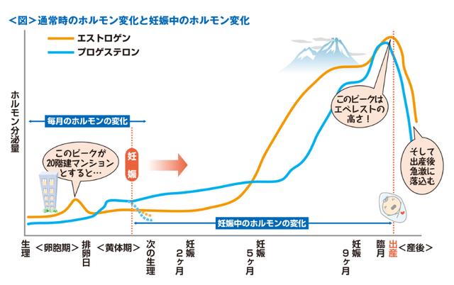 産前産後のホルモン変化グラフ,