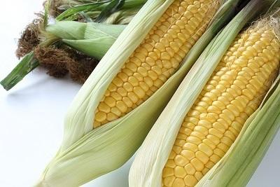 トウモロコシ,人気,ベビーパウダー,選び方