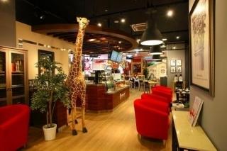 スタジオ カフェ ズーアドベンチャー 店内風景,柏,個室,子連れランチ