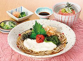 和食麺処サガミのメニュー,日進,子連れ,ランチ