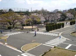 公共の道路に近い環境で学習できる,無料,北九州,遊び場
