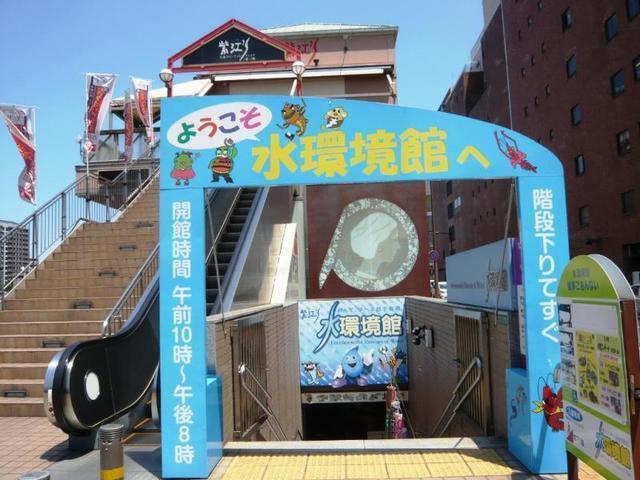 生き物好きにおすすめ穴場スポットです,無料,北九州,遊び場