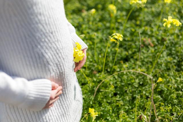 妊娠5か月ごろの妊婦さんイメージ,戌の日,安産祈願,お参り