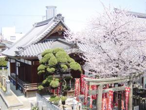 常光円満寺,安産祈願,神社,大阪