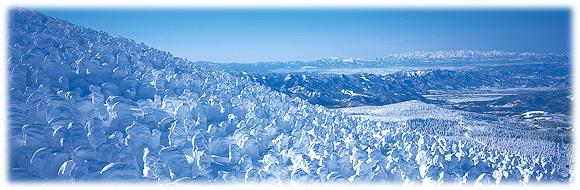 蔵王温泉の樹氷,山形県,スキー場,子連れ