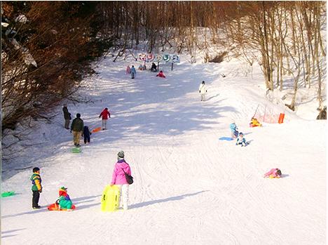 米沢スキー場,山形県,スキー場,子連れ
