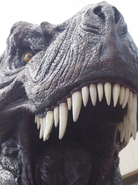 恐竜,恐竜,絵本,