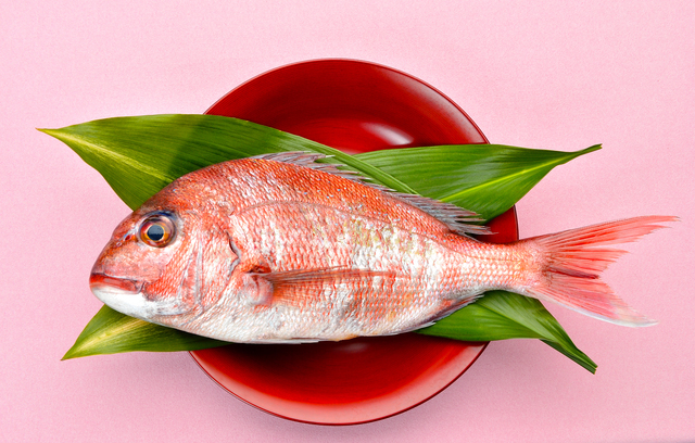 鯛,お食い初め,体験談,