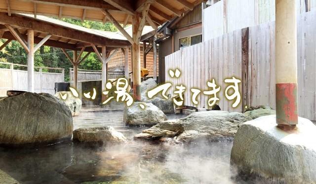 ホテルヘリテイジ 四季の湯,温泉,東京近郊,