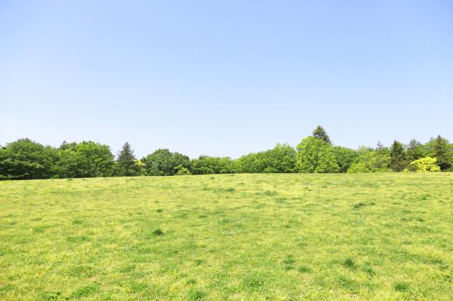 府中の森公園の芝生,授乳,室,
