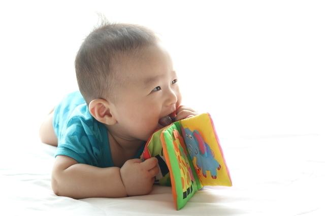 布絵本で遊ぶ赤ちゃん,赤ちゃん,布絵本,