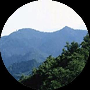 金勝山,埼玉,登山,子ども