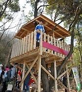 アジロ自然の森展望台,高知,ハイキング,おすすめ