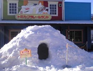 かまくら,軽井沢,おもちゃ王国,冬
