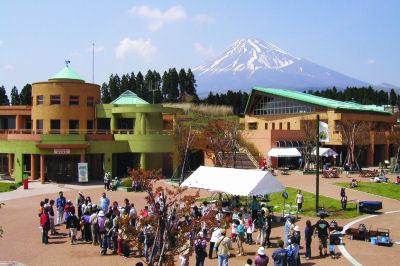 富士山こどもの国の街の広場,富士山こどもの国,キャンプ,