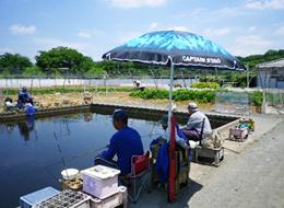 伊藤園つりぼり,東京,おすすめ,釣り堀