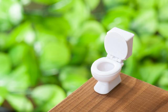 洋式トイレ,妊娠,9週,症状