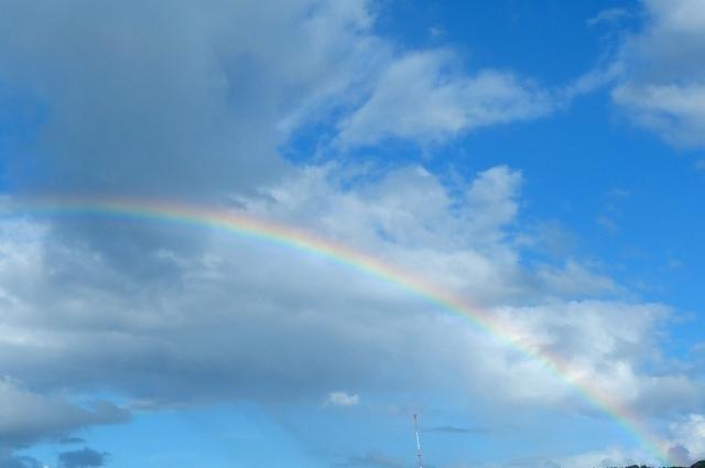 虹の写真,子宮外妊娠,
